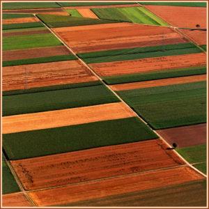 Φωτοερμηνεία Αγροτεμάχια